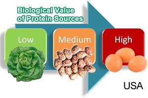 home-course-study-nutrition-propta