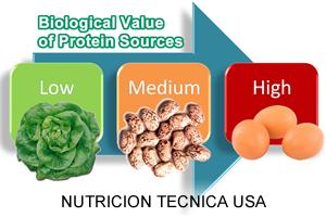 home-course-study-nutricion-usa-propta_