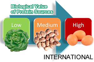 home-course-study-nutrition-propta_international